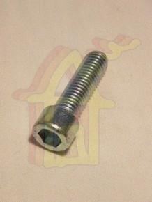 Hengeres fejû, belsõ kulcsnyílású csavar M6 x 25 mm horganyzott